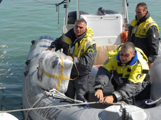 Marijuana dal mare: il recupero e lo sbarco in porto