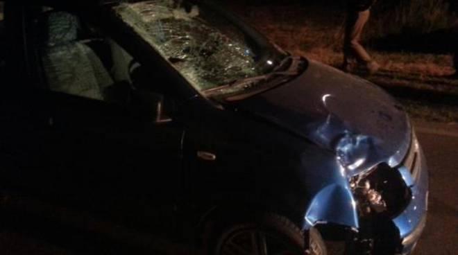 Non ce l ha fatta  troppo gravi le conseguenze riportate nello schianto  fatale contro un auto. Giorgia Caruso, di soli 15 anni, è morta poco dopo  le 20 e 15 ... 3d932261e80f