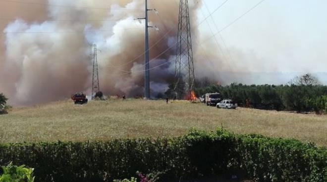 Vasto incendio tra Portocannone a Campomarino