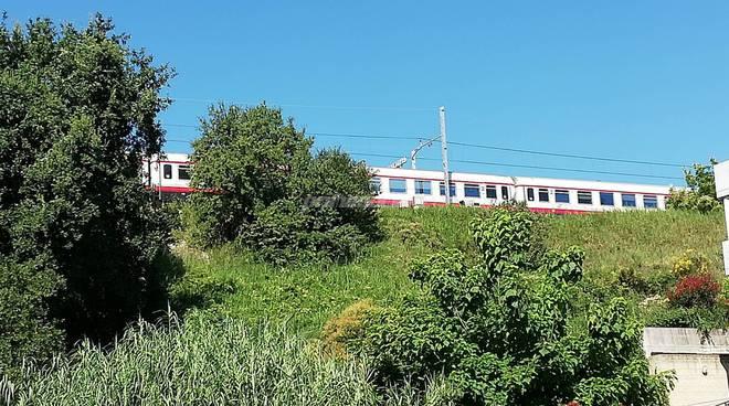 Linea ferroviaria invasa da erbacce 1