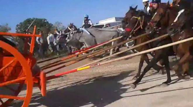 corsa dei carri portocannone