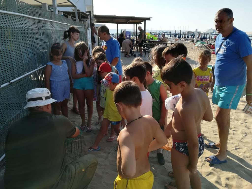 Educare in riva al mare 1