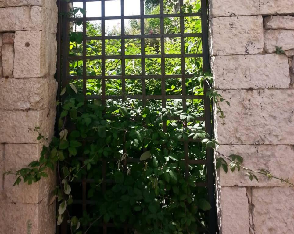 Giardino Delicata Civerra Campobasso