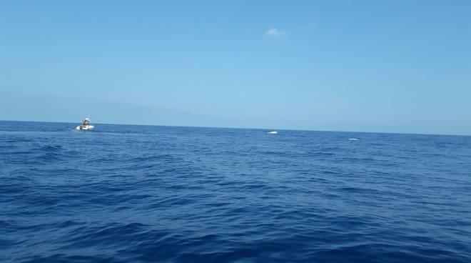 barca-rovesciata-134650
