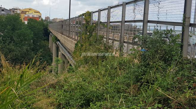 ponte-termoli-via-corsica-135831