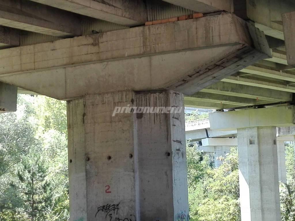 ponti-e-viadotti-a-campobasso-135928