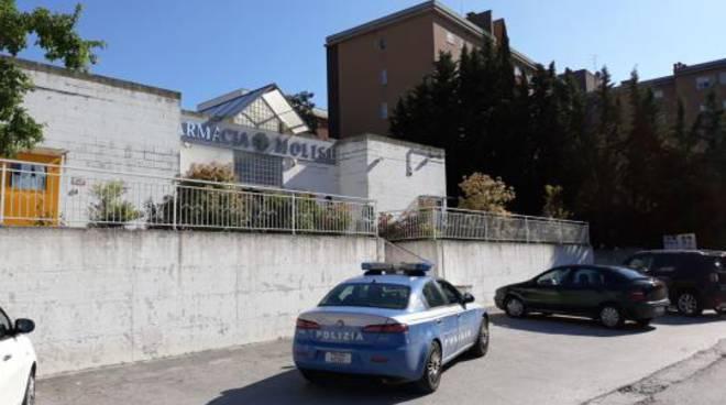 rapina farmacia via Calabria Polizia Campobasso