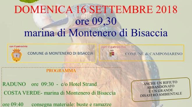 Montenero Green day