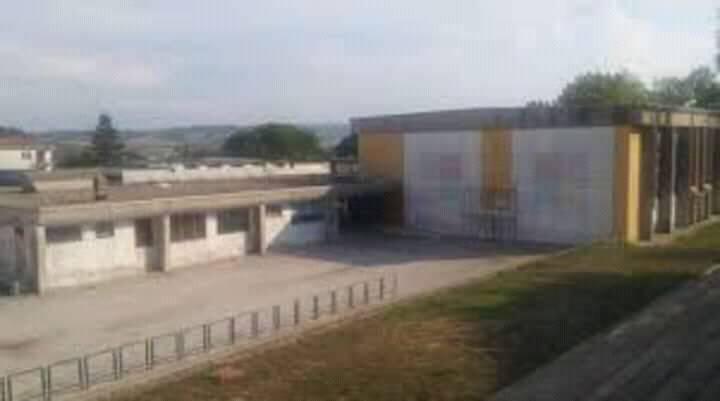 scuola portocannone