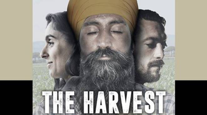 film The Harvest