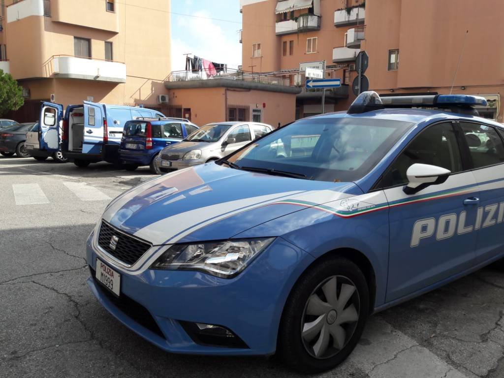cani-antidroga-polizia-138166
