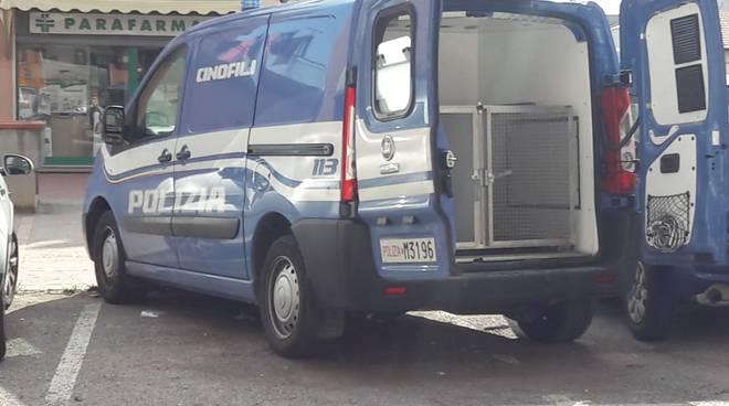 cani-antidroga-polizia-138167