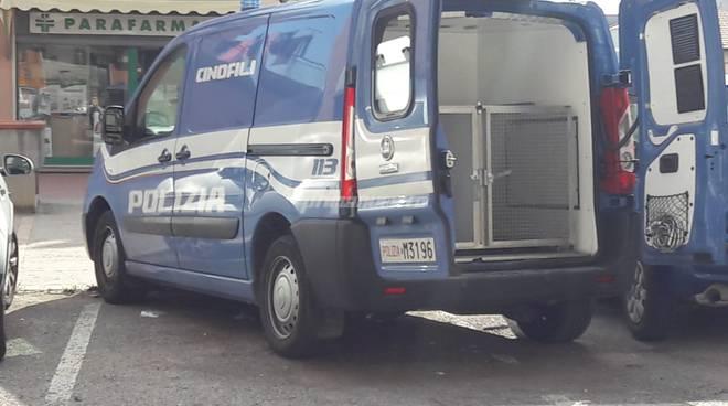 cani-antidroga-polizia-138171