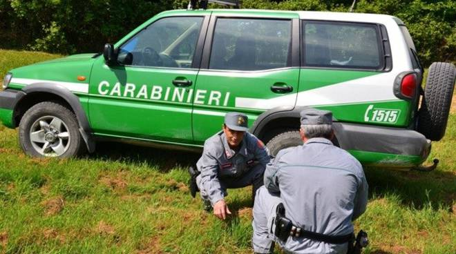 Carabinieri Forestali di Isernia