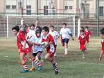 molide-dolphins-rugby-u12-a-teramo-138347