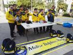 Molise Dolphins rugby