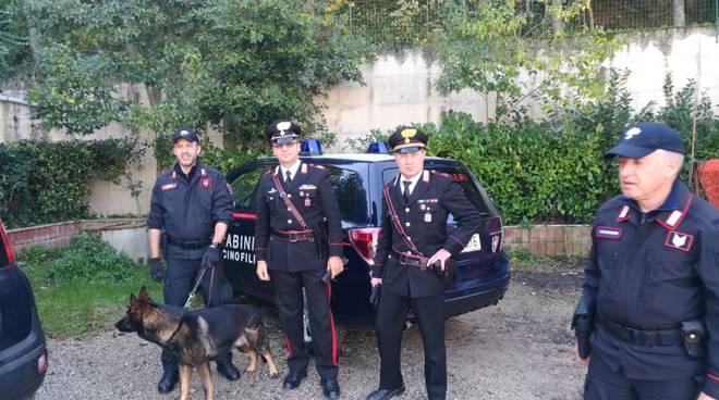 carabinieri-e-unita-cinofile-139840