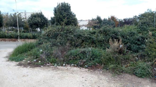 discarica-guglionesi-139493