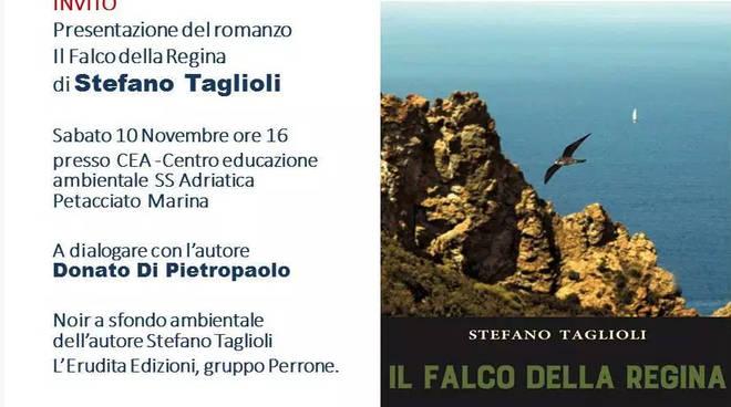 falco-libro-139449