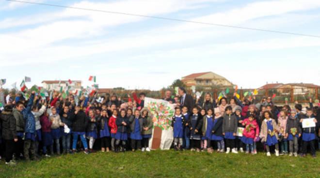 Festa albero Campomarino