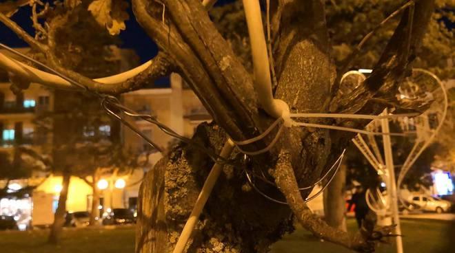 fili elettrici alberi