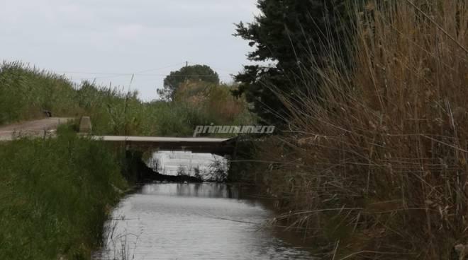 maltempo-rio-vivo-canali-pieni-140537