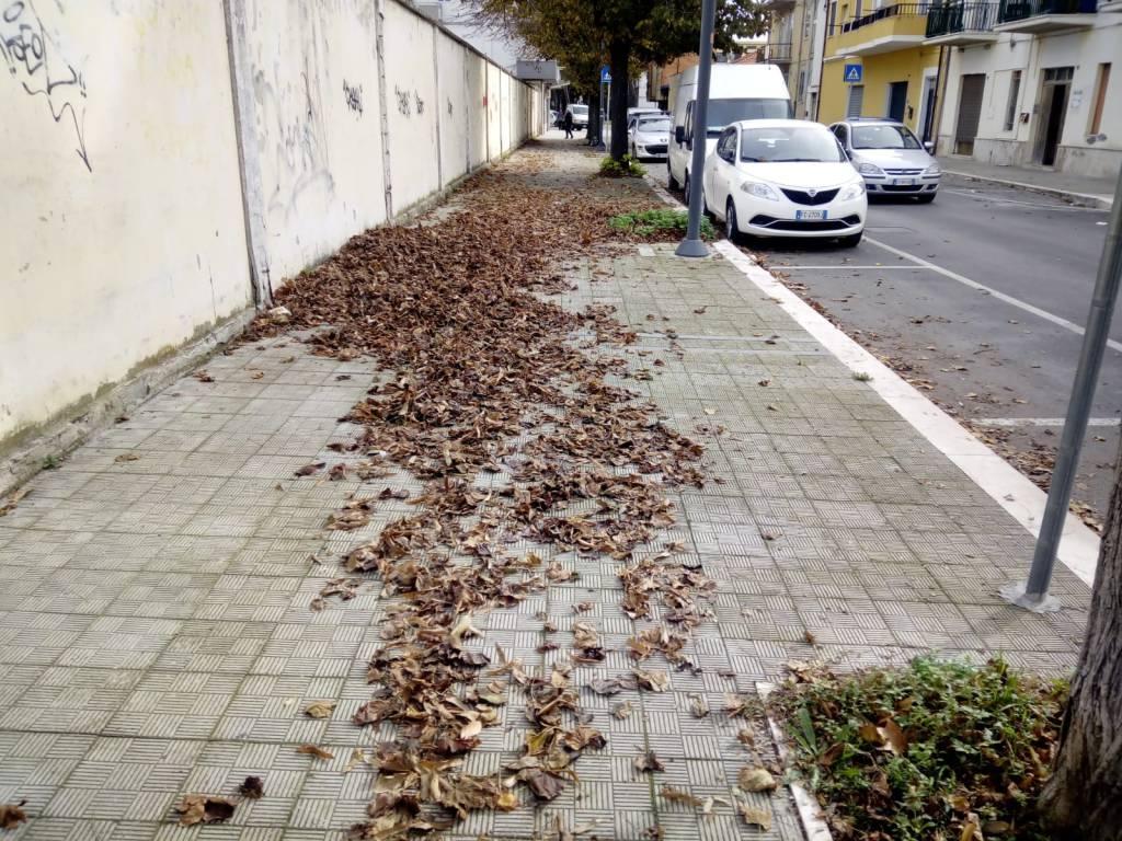 tappeto-foglie-139436