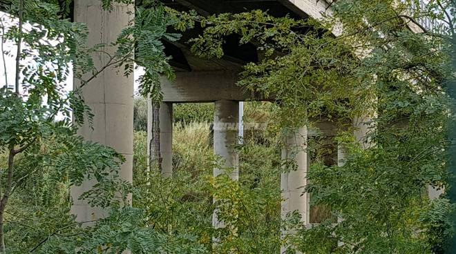 viadotto-santa-maria-139330