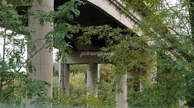 viadotto-santa-maria-139331