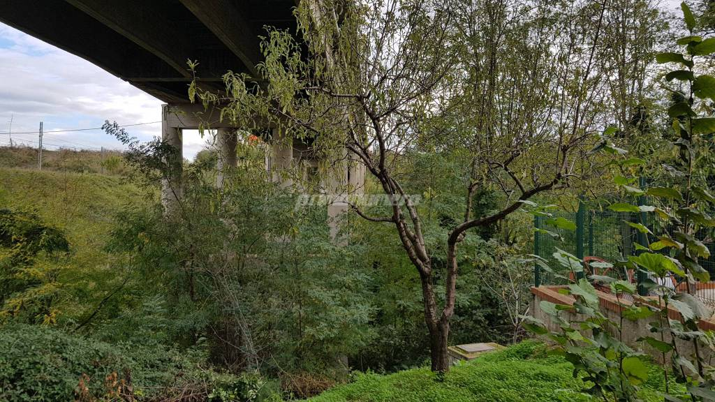 viadotto-santa-maria-139335