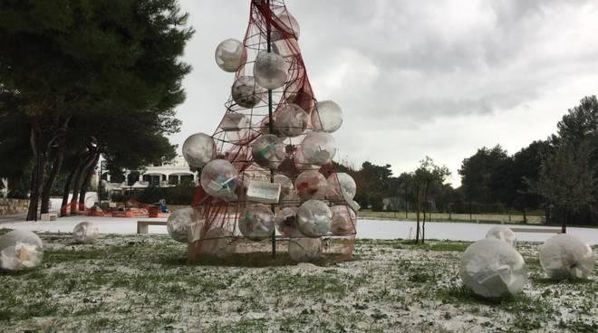 albero-di-natale-tremiti-141427