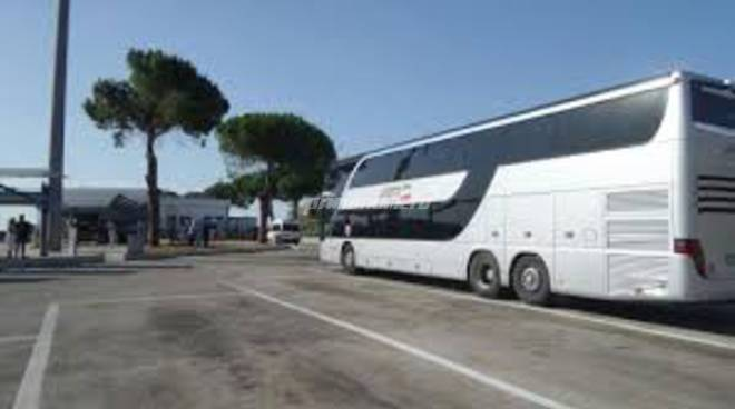 autobus-e-circolari-142504