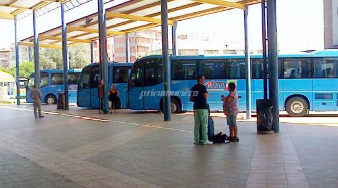 autobus-e-circolari-142506
