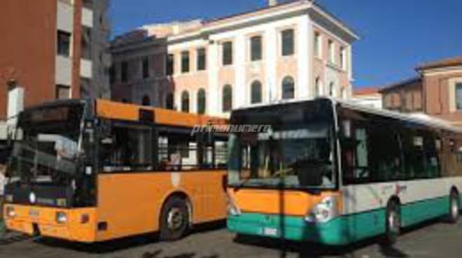 autobus-e-circolari-142507
