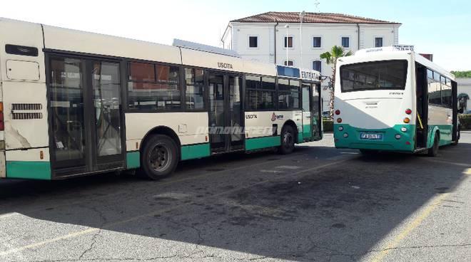 autobus-e-circolari-142509