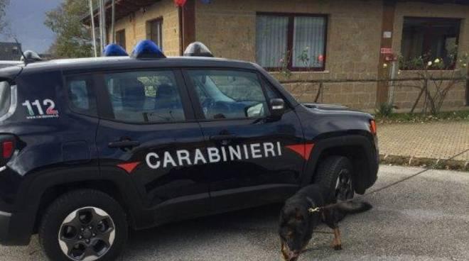 Carabinieri cinofili Bojano