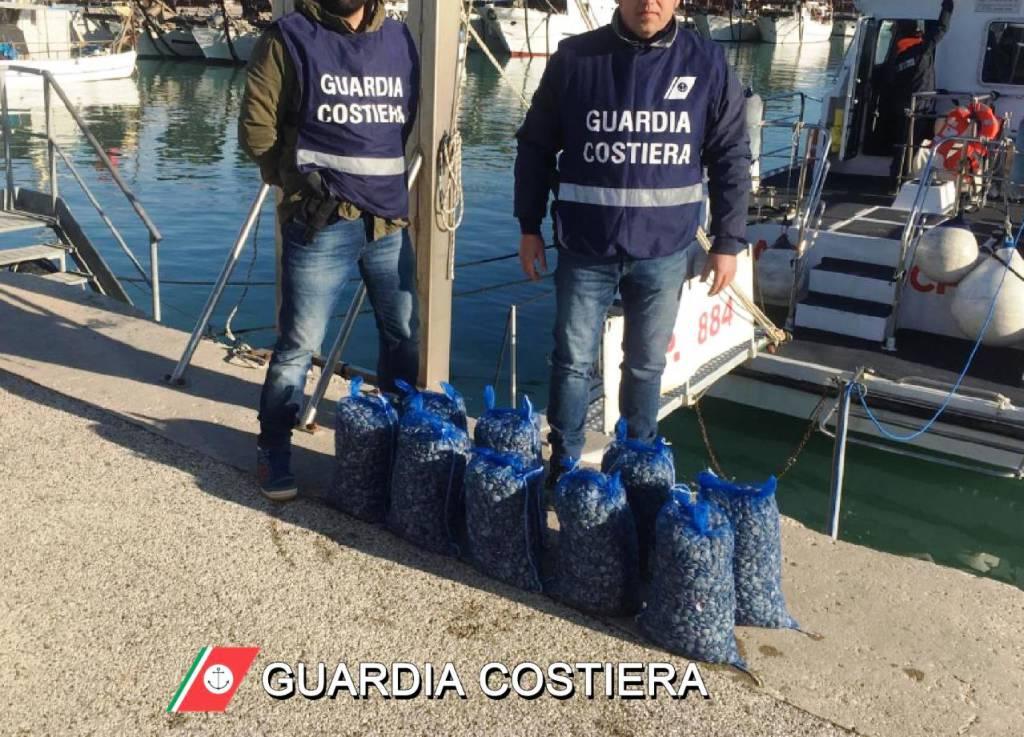 pesce-sequestrato-capitaneria-142052