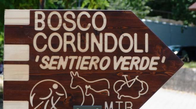 bosco-corundoli-montecilfone-143809