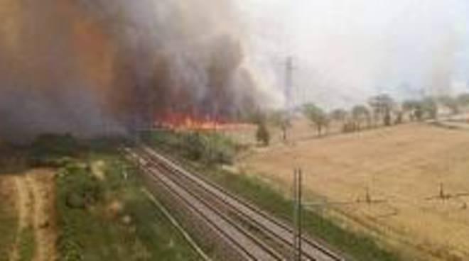 incendi vicino ferrovia