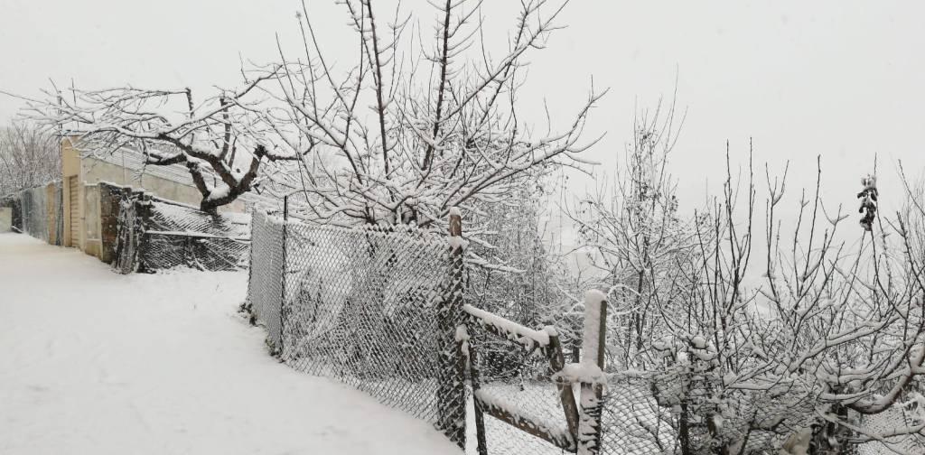 Neve 11 gen 19