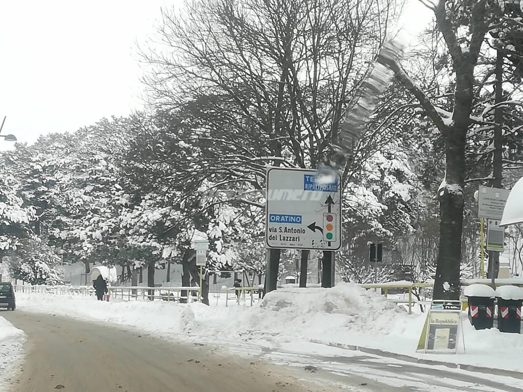 neve-a-campobasso-142839