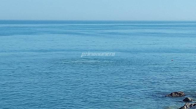Chiazza depuratore in mare