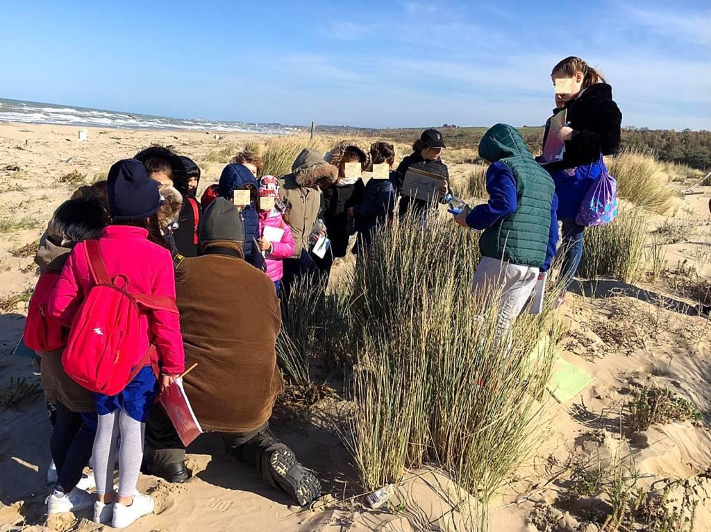 bambini-dune-147256