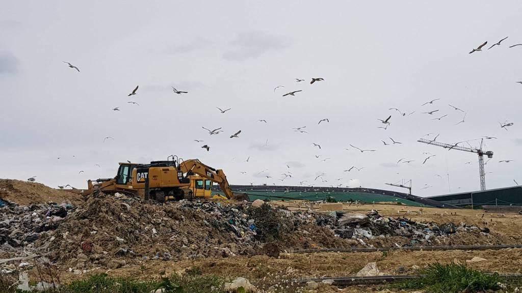 discarica-e-impianto-biogas-guglionesi-146621