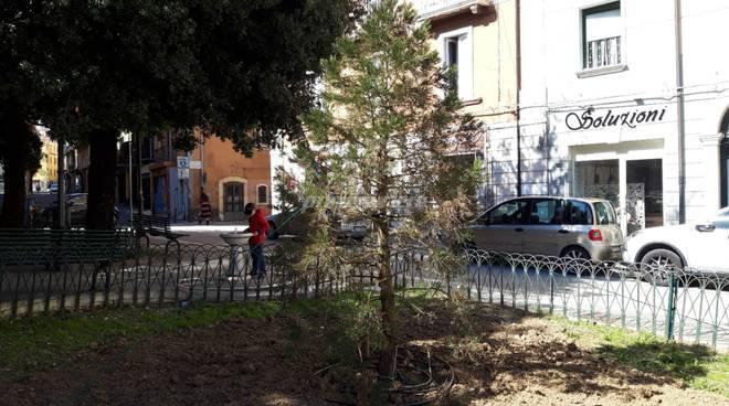 nuova sequoia Campobasso