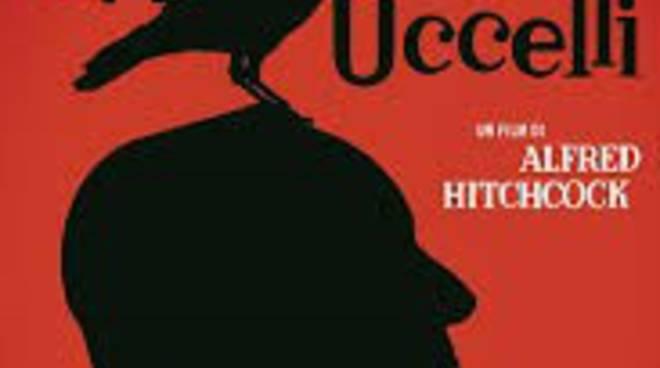 Gli uccelli Hitchcock