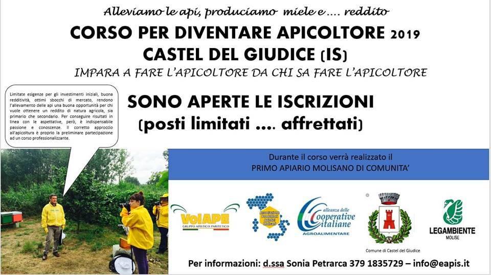 Corso apicoltore Castel del Giudice