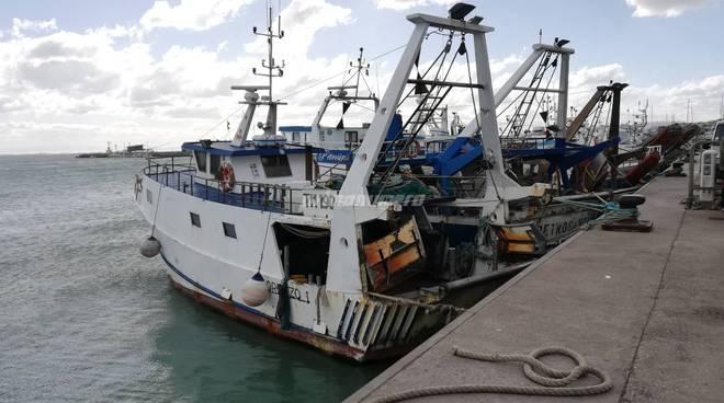pescherecci-al-porto-146173
