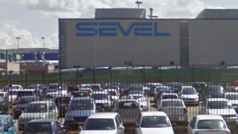 sevel-146090