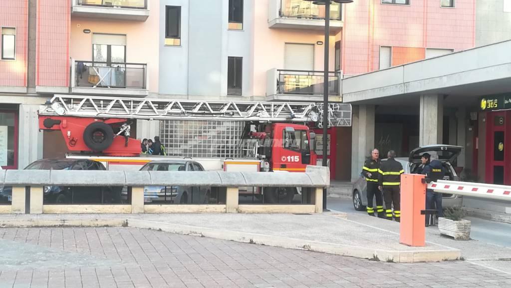 vigili-del-fuoco-parco-dei-pini-146098